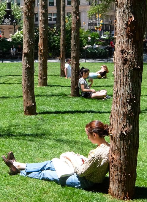 NYの公園にじわじわ系アート、『オバケの森』(Ghost Forest)登場中_b0007805_02444585.jpg