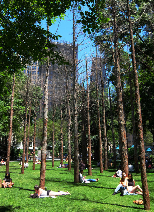 NYの公園にじわじわ系アート、『オバケの森』(Ghost Forest)登場中_b0007805_19305420.jpg