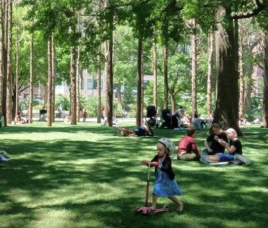 ニューヨークの公園の遊び方_b0007805_21295790.jpg