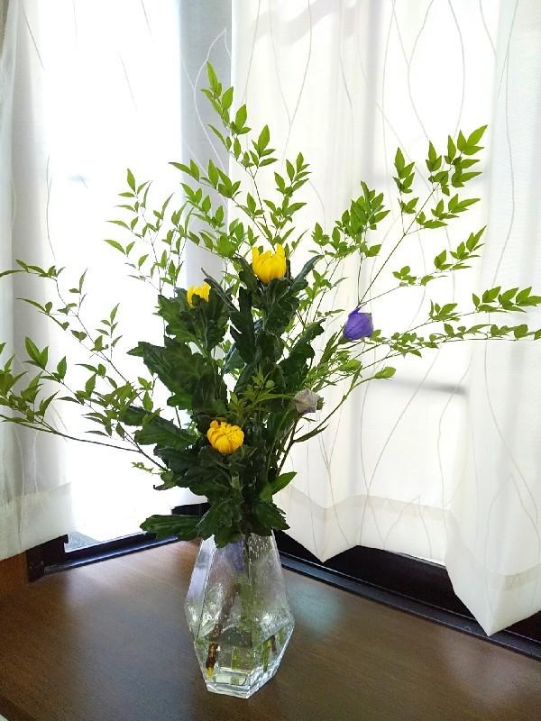 お花とあれこれ_c0292342_13033925.jpg
