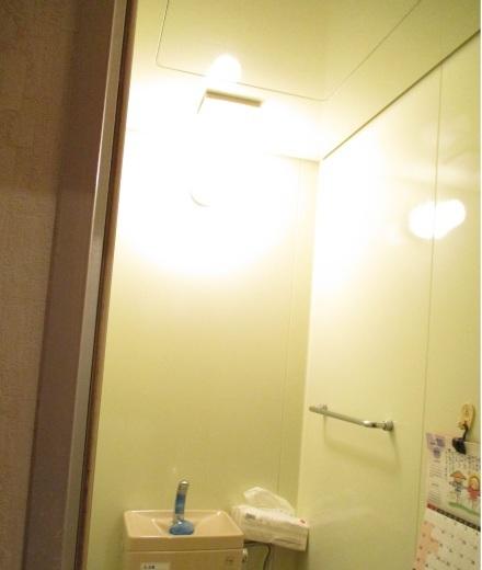 ユニットトイレのリフォーム_d0358411_17072840.jpg