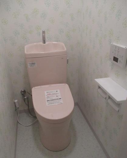 ユニットトイレのリフォーム_d0358411_17092958.jpg