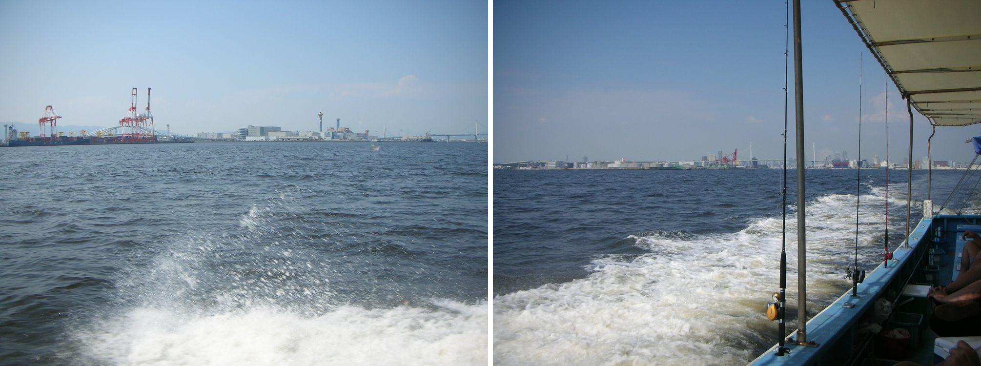 ヤザワ渡船  神戸沖 アジ釣り(2021-06-24)_a0016431_13594062.jpg