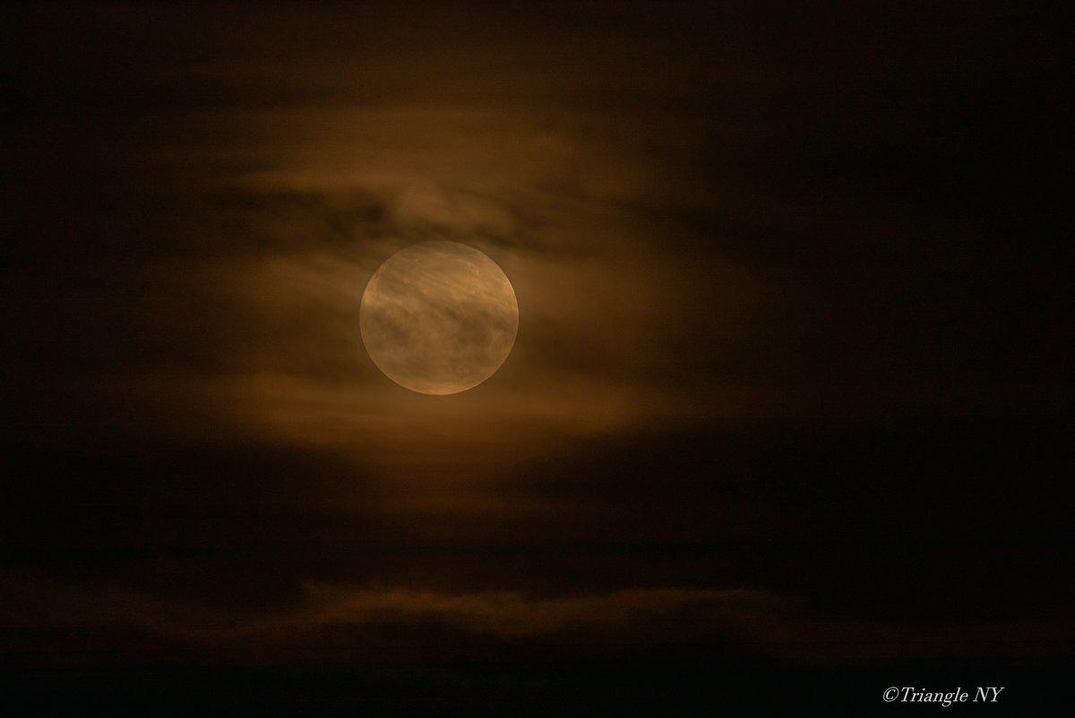 Super Strawberry Moon 2021 ー記録ー_a0274805_12182891.jpg