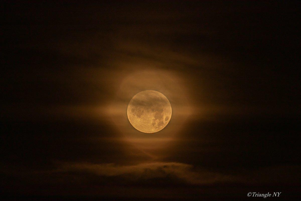 Super Strawberry Moon 2021 ー記録ー_a0274805_12190350.jpg