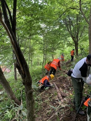 6/27(日) 高川山林 笹刈り、作業道づくり_c0173813_10335119.jpg