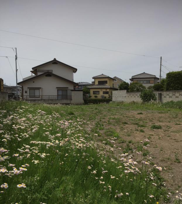高崎へ_d0106648_16485729.jpg
