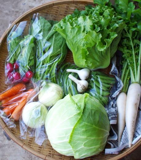 今週の野菜セット(6/29~7/3着)_c0110869_13045089.jpg