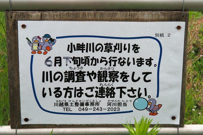 小畔川便り(工事のお知らせ:2021/6/20)_f0031682_09565307.jpg