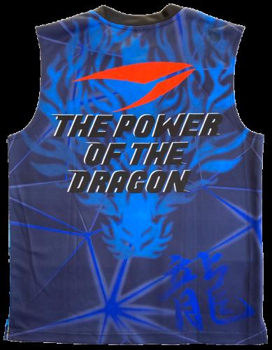 ☯ 2021 FIGHT-DOドラゴンウェアー新発売のお知らせ ☯_e0137386_15372962.png