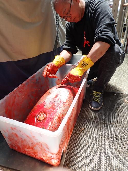SRX250F 2 タンク塗装 シート張り替え_a0339187_22162878.jpg