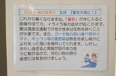 柚の森便り「夏を元気に!」_f0354314_11160398.jpg