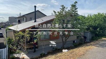 猫と自然と暮らす家、完成見学会を開催します。_a0059217_19470626.jpg