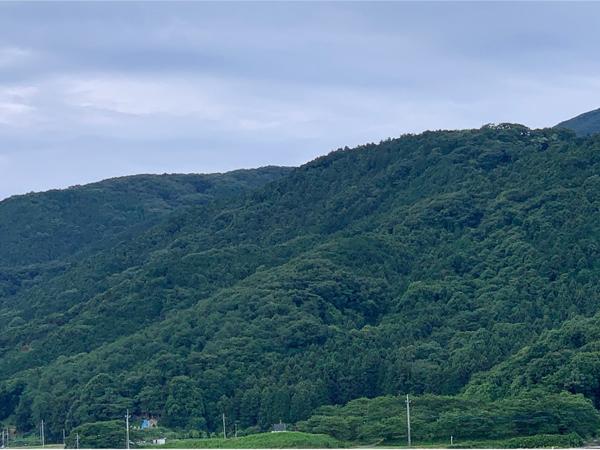 里山のオオクワを求めて散策    昔のポイントは…_c0346119_19361601.jpg