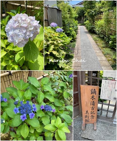 梅雨の晴れ間の鎌倉散歩~and etc.~_c0079828_16564209.jpg
