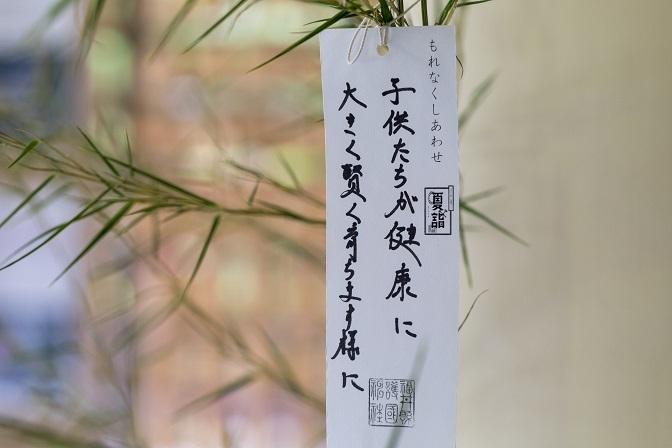 夏越の大祓式_f0067122_15461350.jpg