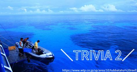 【フィリピントリビア】海の楽園・トゥバタハ岩礁自然公園_d0146933_16544602.png
