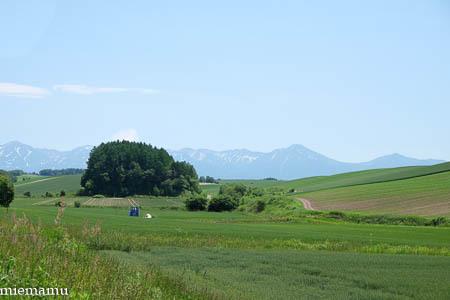 静かな丘の景色~6月の美瑛_d0340565_19501454.jpg