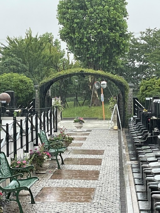 雨の日のできごと_b0263390_10540426.jpg