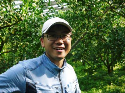 デコポン(肥後ポン) 匠の摘果作業(2021) 大きく、甘く、美しく育て上げるための匠の技 _a0254656_20064822.jpg