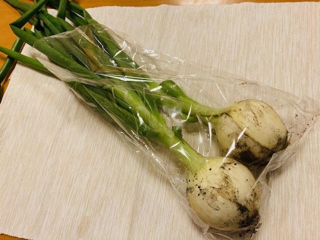 野菜定期便 / sono_d0135801_17440041.jpg