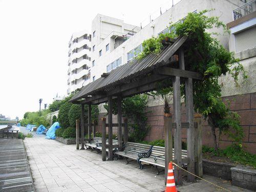 探索隊の隅田川と都電_c0141013_07451388.jpg