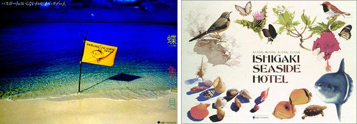 NANJYa?COLe42/南の楽園が甦る、思い出の貝たち。_e0120614_10581200.jpg