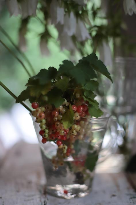 花と写真とテーブルと〜コラボイベントのお知らせ_b0208604_00111106.jpg