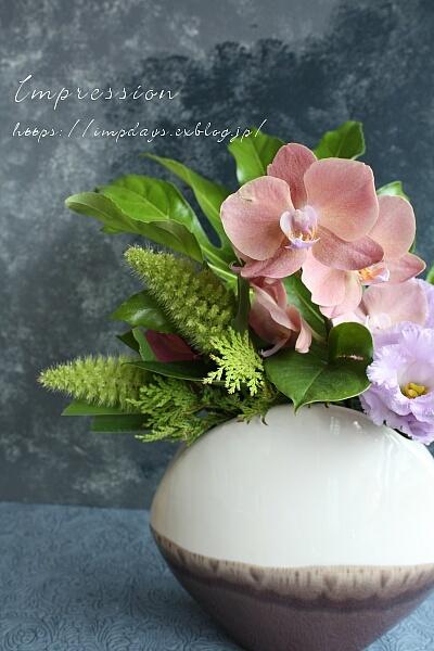 定期装花から ミニファノレプシス_a0085317_15325566.jpg