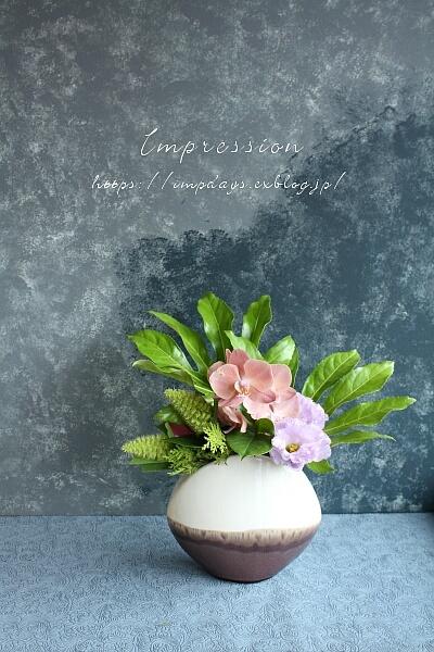 定期装花から ミニファノレプシス_a0085317_15330002.jpg