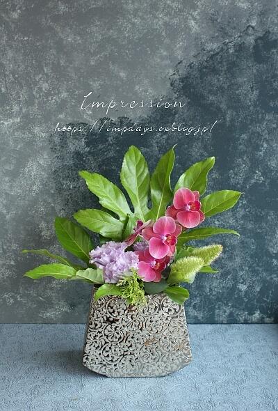 定期装花から ミニファノレプシス_a0085317_15331096.jpg