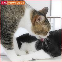 アニキと弟_a0389088_14203770.jpg