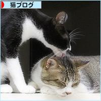 アニキと弟_a0389088_14203799.jpg