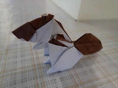 いけばなに続くは「折り紙展」_f0203094_10531163.jpg