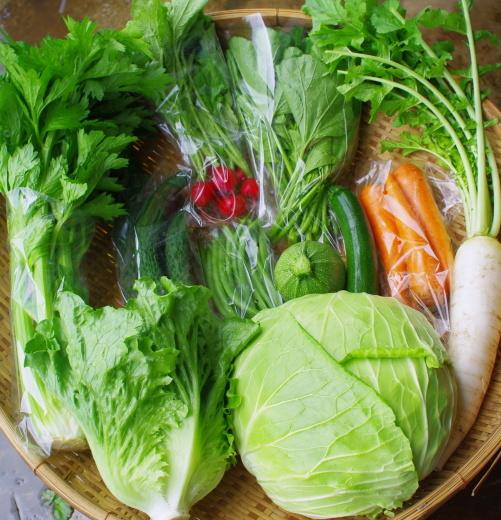今週の野菜セット(7/6~7/10着)_c0110869_12421138.jpg