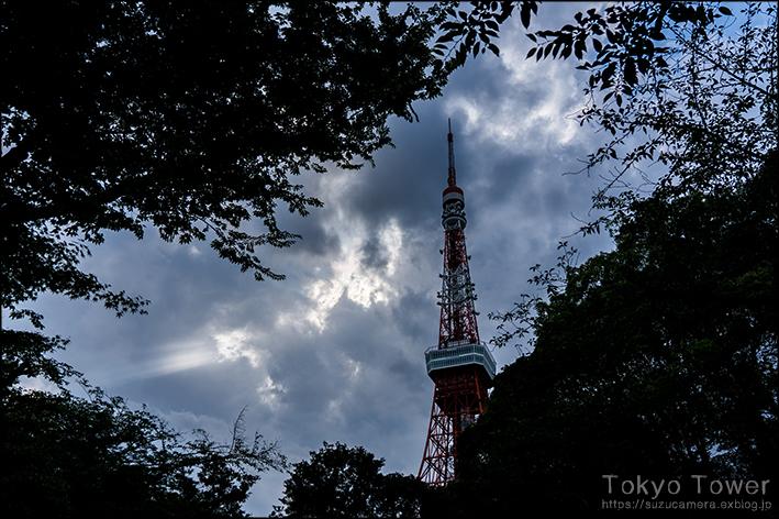 東京タワー_f0100215_19244014.jpg