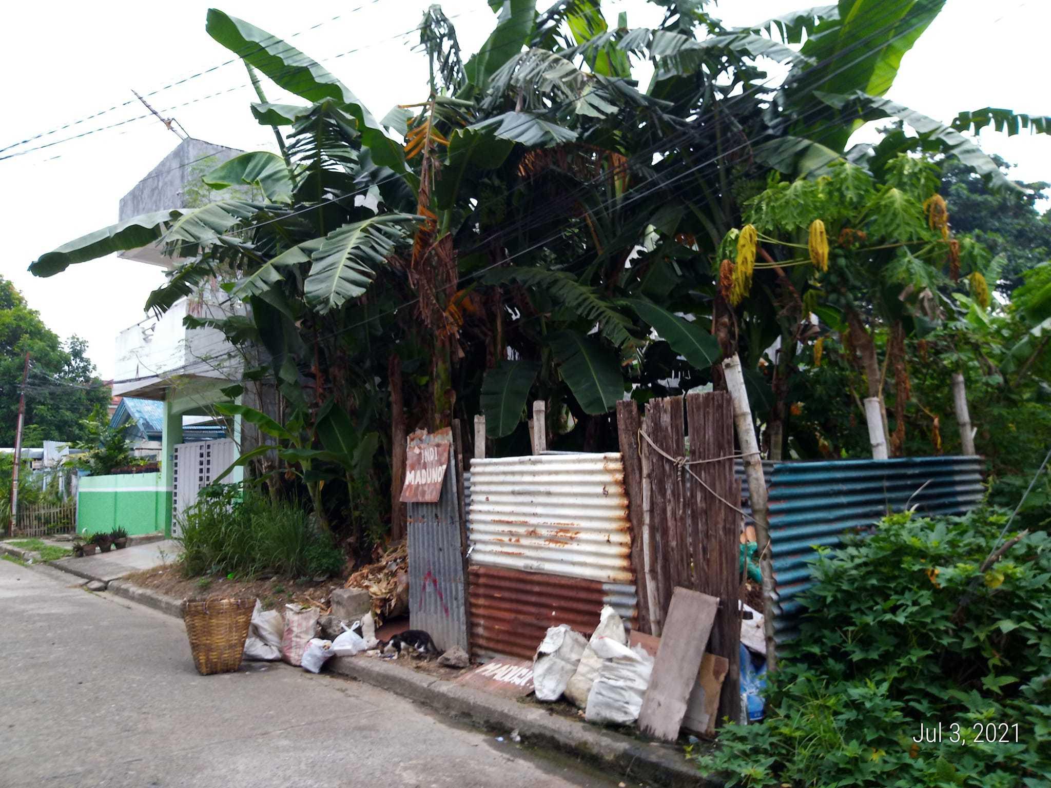 フィリピンのゴミ事情を解説します!(2021年)_d0146933_22260473.jpg