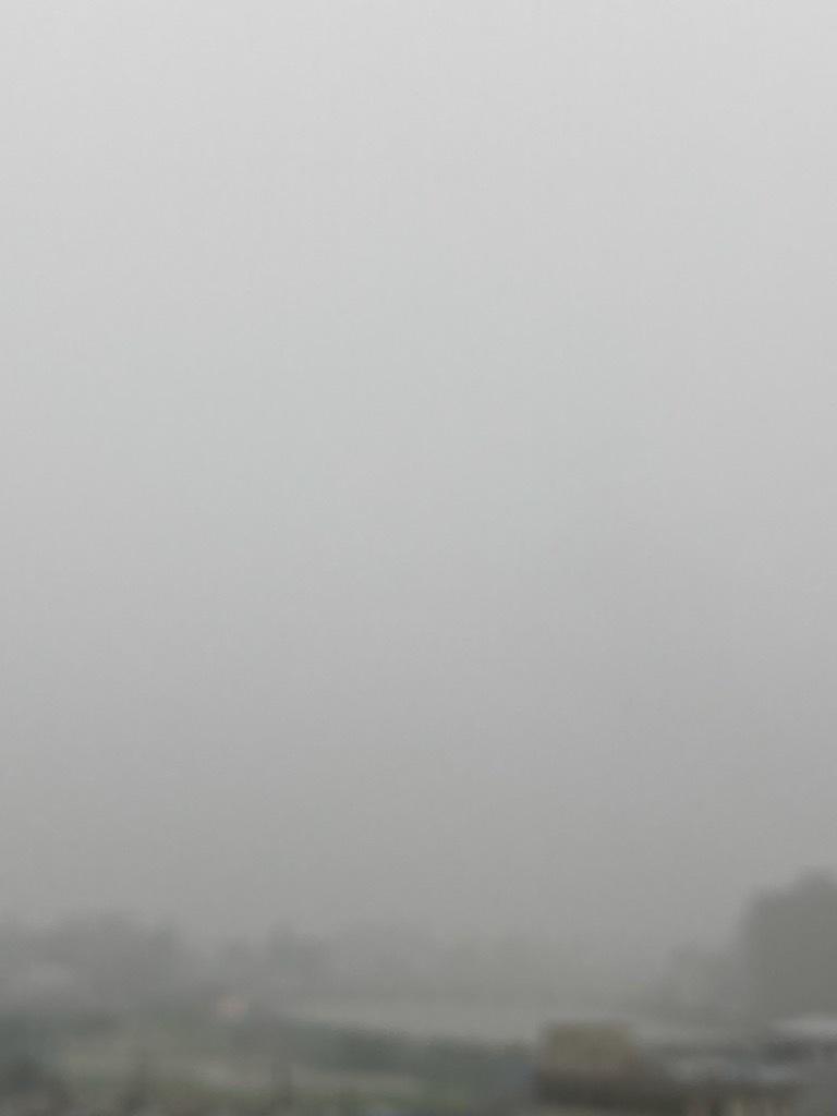 雨上がりのベランダ_f0204295_17241790.jpg