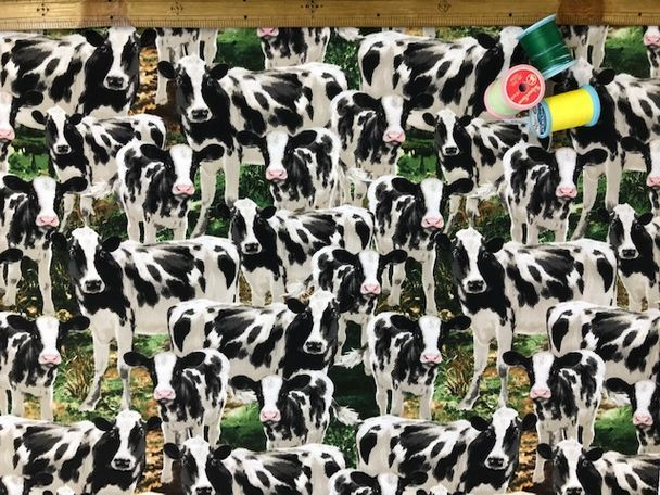 布「牛たち」_d0156706_14183146.jpg