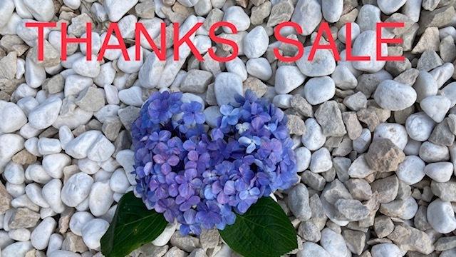 THANKS SALE♪  ~オンラインショッピングも開催です♪~_d0108933_20435229.jpg