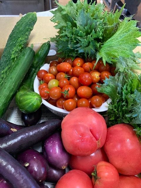 7月9日 お野菜届きました♪_b0158746_11315428.jpeg