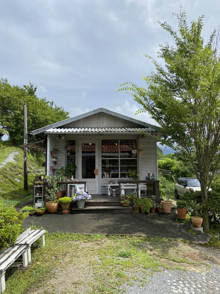 篠竹の買い物かごとラオスのかご_c0334574_19515634.jpeg