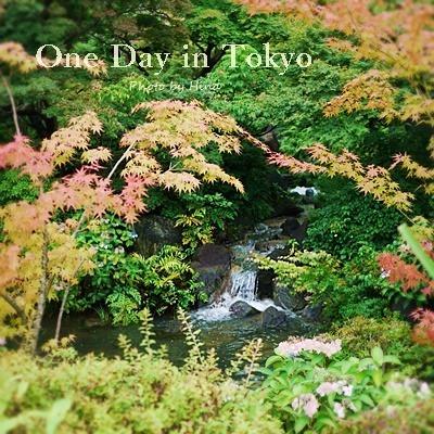 梅雨明けが近そうな、One Day in Tokyo_f0245680_11143730.jpg