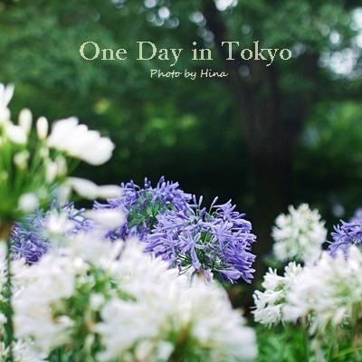 梅雨明けが近そうな、One Day in Tokyo_f0245680_11163311.jpg