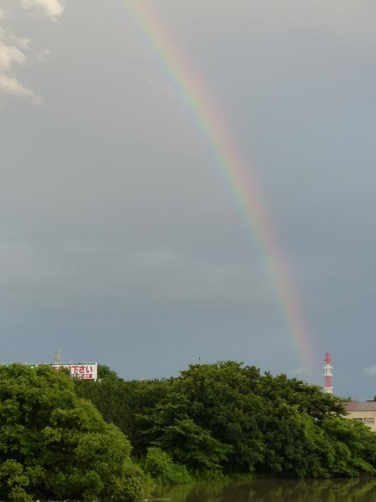 大きな虹が!_f0296312_20540599.jpg