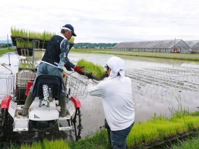 無農薬栽培の『米粉』『雑穀米』『発芽玄米』大好評販売中!令和3年度の田植えの様子を現地取材!(前編)_a0254656_16460305.jpg