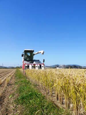 無農薬栽培の『米粉』『雑穀米』『発芽玄米』大好評販売中!令和3年度の田植えの様子を現地取材!(前編)_a0254656_17322889.jpg