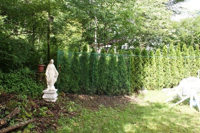 庭に彫刻を置いてみました_d0153860_07120012.jpg