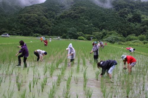 第17回 米酒の会 #2 生き物観察と草取り 2021年7月_d0171387_17112176.jpg