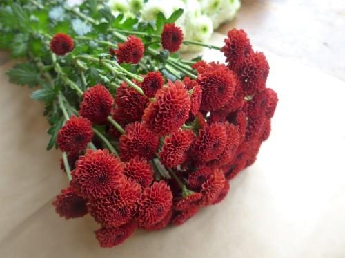 花修行~真っ赤なリンゴのアレンジメント~_f0232060_21125498.jpg